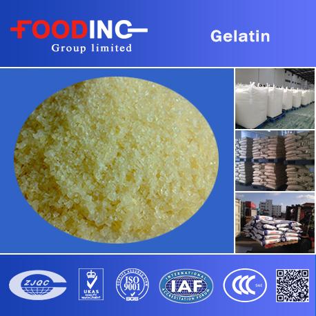 Gelatin Manufacturer