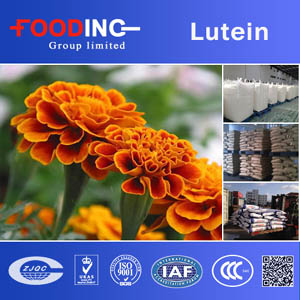 Inulin Powder Suppliers