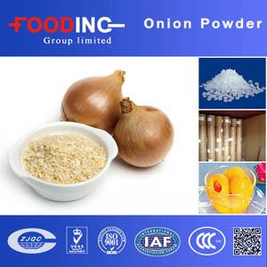 Onion Powder Suppliers