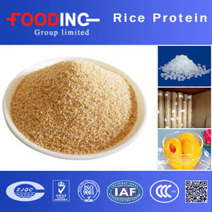 Rice Protein Powder Suppliers