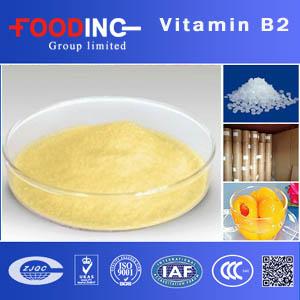 Vitamin B2 Manufacturers