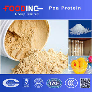 Pea Protein Suppliers